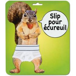 Slip pour écureuil
