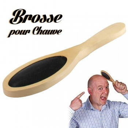 Brosse pour chauve