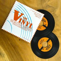 Dessous de plat disque vinyl silicone x 2
