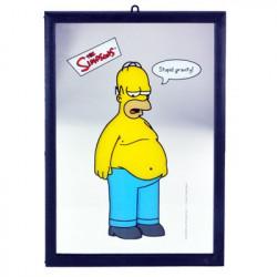 Miroir Homer Simpsons Stupid Gravity
