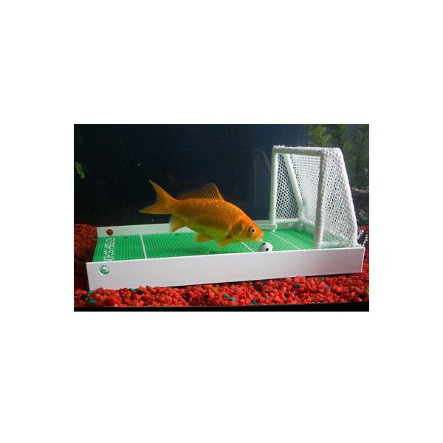 Centre de dressage pour poisson rouge 24 99 for Faux poisson rouge