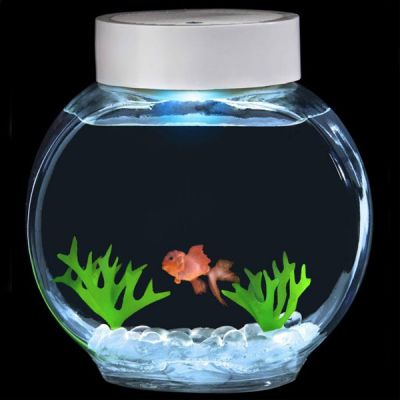 Aquarium magique poisson rouge 33 90 for Deco aquarium poisson rouge