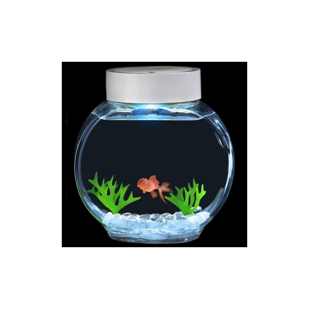 Aquarium magique poisson rouge 28 82 for Deco aquarium poisson rouge