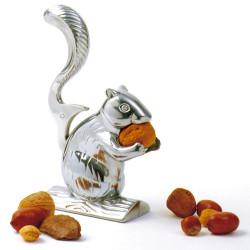 Ecureuil casse-noix et noisettes