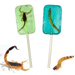 Lot de 2 sucettes insectes