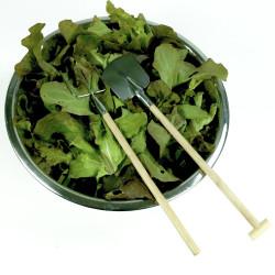 Couverts à salade jardinier