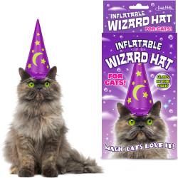 Chapeau de magicien pour chat