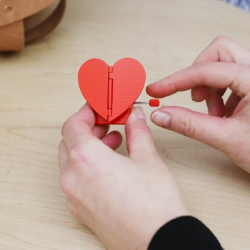 Petit coeur mécanique palpitant