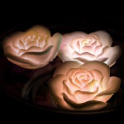 Roses lumineuses flottantes LED