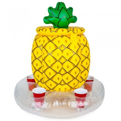 Bar flottant Ananas