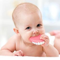 Anneau de dentition Dentier