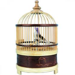 Oiseau chanteur mécanique