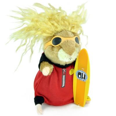 Marmotte surfeur