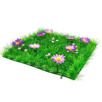 Morceau de prairie pelouse et fleurs