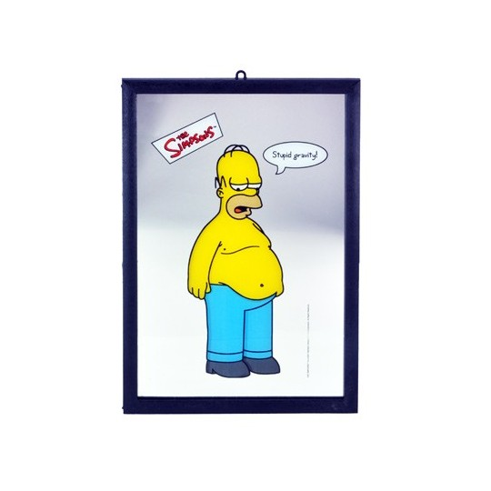 Miroir Homer Simpsons Stupid Gravity