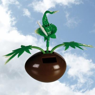 Plante cannabis solaire