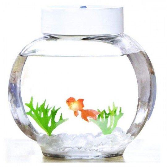 Aquarium magique poisson rouge 33 90 for Image aquarium poisson rouge