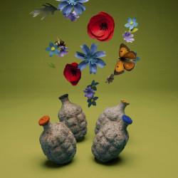Pack 4 grenades à graines fleurs sauvages