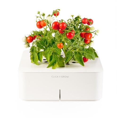 Click and Grow : Jardinière geek Tomates cerises